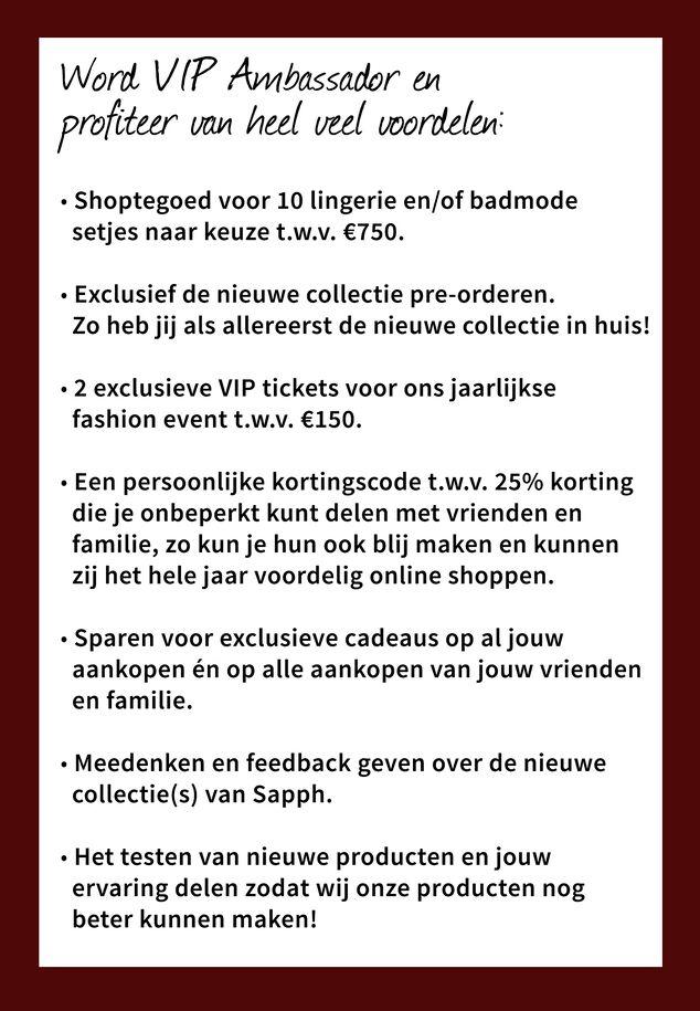 VIP Ambassador Certificaat image number 1