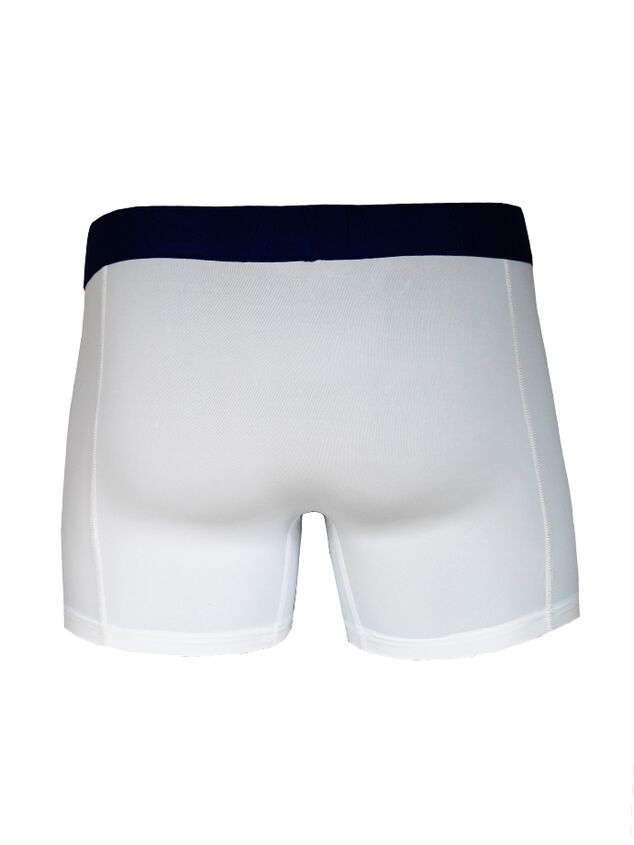 Ethan Micro 2-pack Shorts image number 1